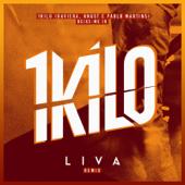 [Download] Deixe-Me Ir (LIVA Remix) MP3