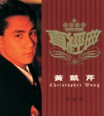 Chris Wong - Mei Jie Guo Di Yi Xie Gan Qing (Album Version)