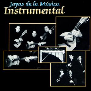 Jose Luis Martinez Vesga & Camerata Colombiana Opus 3 - Joyas de la Musica Instrumental