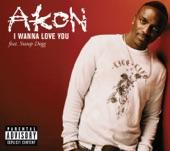 Akon - I Wanna Love You