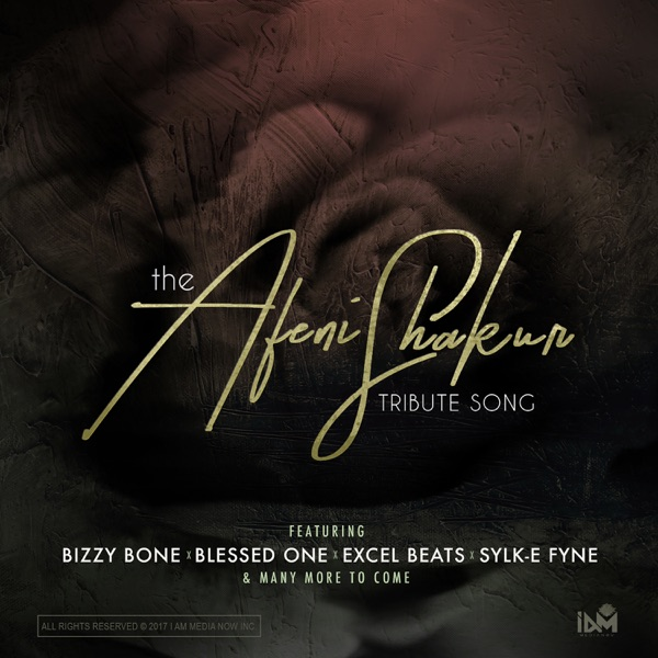 Afeni Shakur Tribute (feat. Bizzy Bone, Sylk-E Fyne & Excel Beats) - Single
