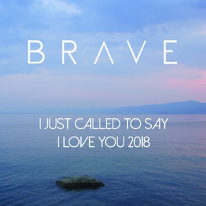 Brave - I Just Called to Say I Love You - Line Dance Music