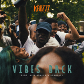 Vibes Back
