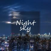 Night Sky-Anita Ferry