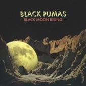 Black Pumas - Black Moon Rising