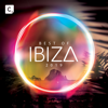 Best of Ibiza 2019 - Various Artists