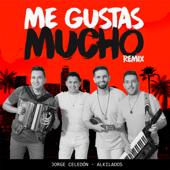 Me Gustas Mucho Remix (feat. Alkilados) - Jorge Celedon