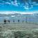 EUROPESE OMROEP | Skywriting - The Yearlings