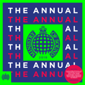 Ministry of Sound: The Annual 2019 - Various Artists, Various Artists
