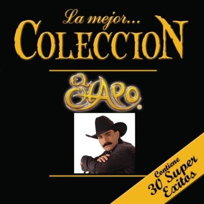 La Mejor Colección: El Chapo, Vol. 2 - El Chapo De Sinaloa