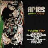 Aries & Krak In Dub feat. Eva Lazarus & Troy Berkley - I & I (Dr Meaker Remix)