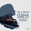 Владимир Пресняков (Мл.) - Ты у меня одна обложка