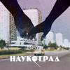 Наукоград - Летний День artwork