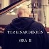 Tor Einar Bekken
