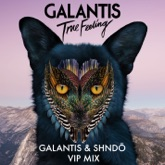 True Feeling (Galantis & shndō VIP Mix) - Single