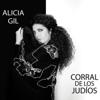 Corral de los Judíos - Alicia Gil