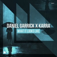 What It Looks Like - DANIEL GARRICK-KARRA