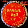 Damage and Joy ジャケット写真