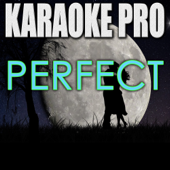 [Download] Perfect (Originally Performed by Ed Sheeran) [Instrumental Version] MP3