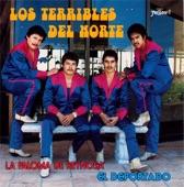 Los Terribles del Norte - Marisol - 14 Cumbiazos