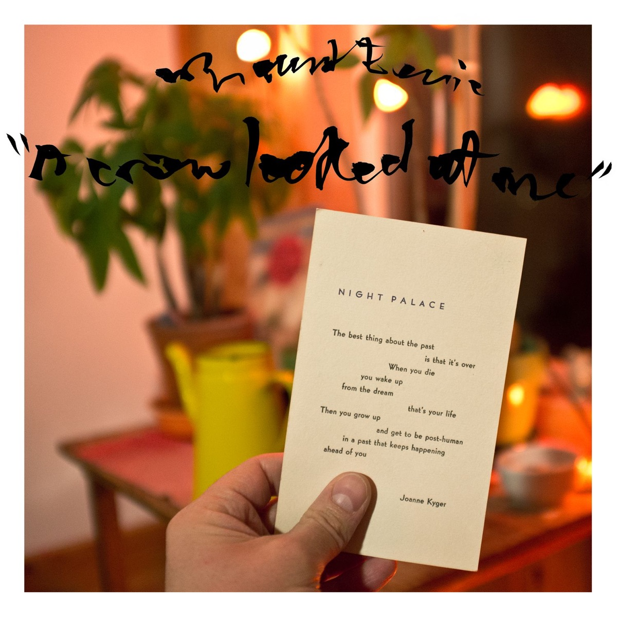 A Crow Looked at Me Mount Eerie CD cover