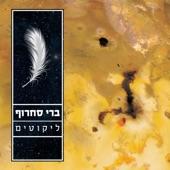 Yareach artwork