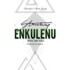 Stonebwoy - Enkulenu Eyes on You artwork