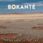 Strange Circles-Bokanté