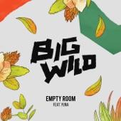 Big Wild - Empty Room