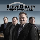 Steve Gulley and New Pinnacle - Not Fade Away