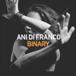 Ani DiFranco - Zizzing (feat. Justin Vernon)