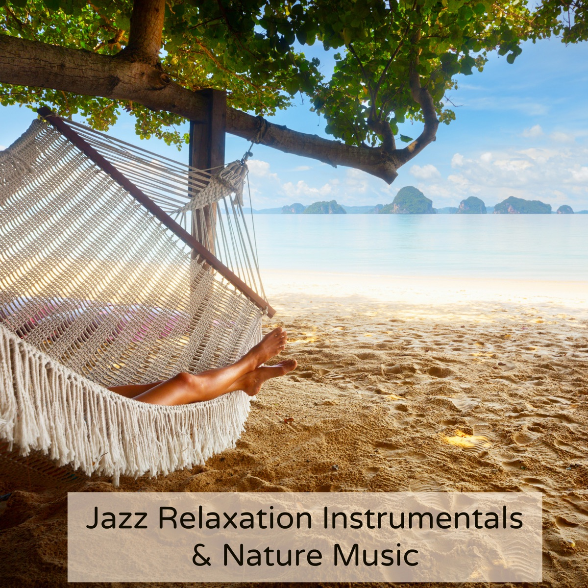Jazz Relaxation Instrumentals & Nature Music Album Cover by