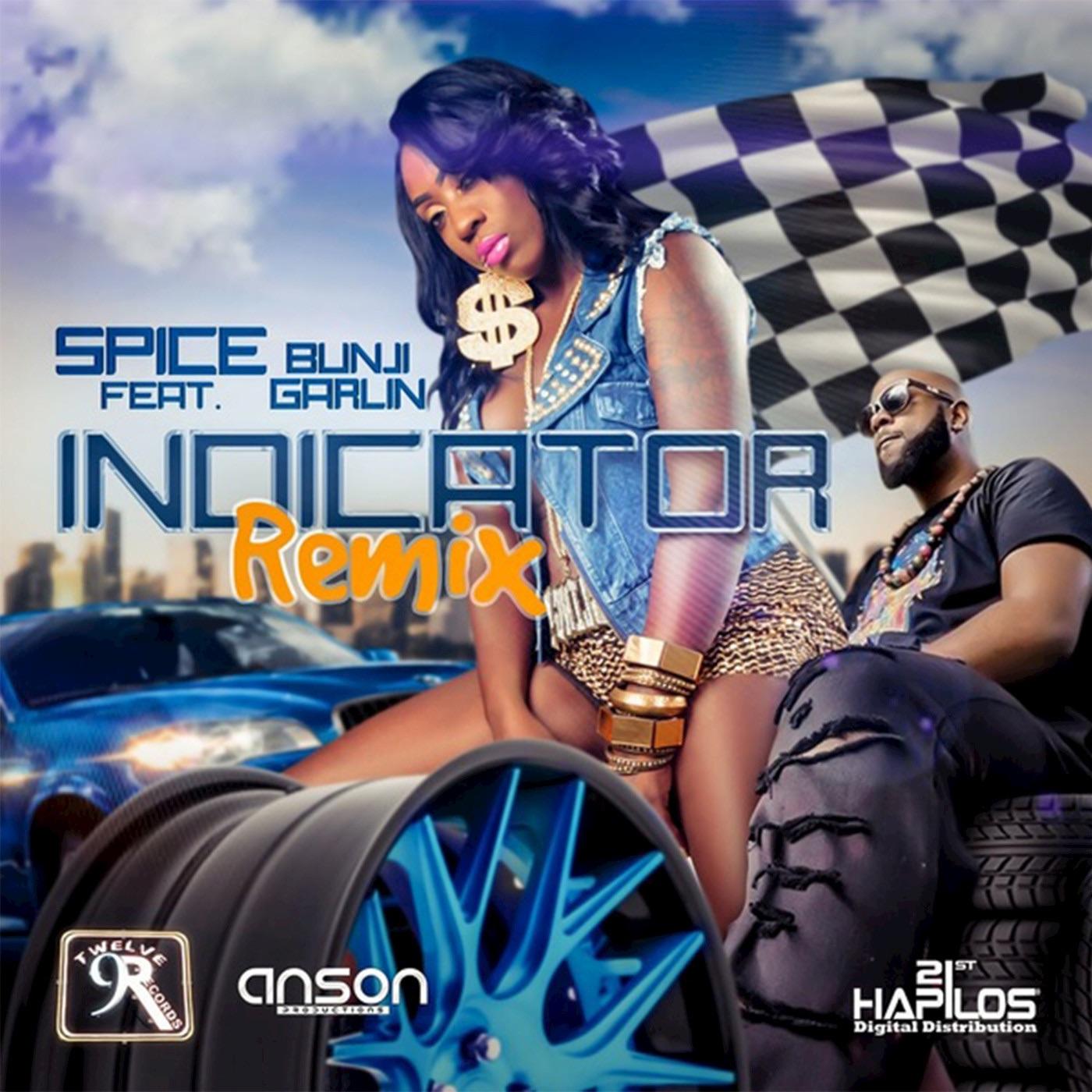 Indicator (Soca Remix) [feat. Bunji Garlin] - Single