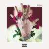 Machine Gun Kelly - bloom  artwork