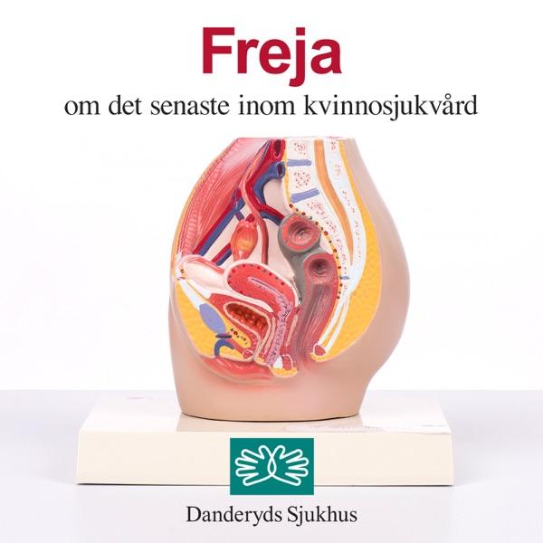 Freja – det senaste om kvinnosjukvård