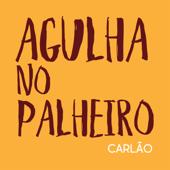Agulha No Palheiro (feat. Bruno Ribeiro)