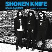 Shonen Knife - Rock 'n' Roll High School