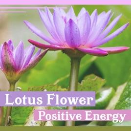 Lotus flower positive energy music for zen relaxation nature lotus flower positive energy music for zen relaxation nature sounds for reiki chakra healing yoga massage therapy mightylinksfo