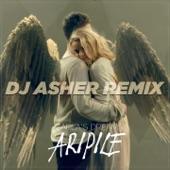 Aripile (DJ Asher Remix) - Single