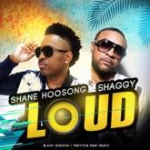 Loud (feat. Shaggy) - Single
