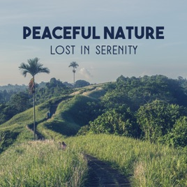 peaceful nature lost in serenity relaxation noise of mother