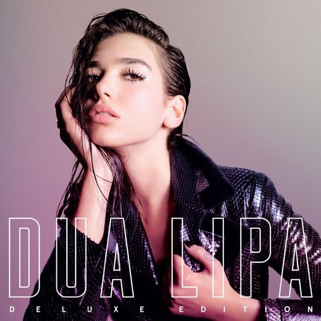 Image result for dua lipa album cover