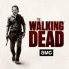 The Walking Dead, Season 7 wiki, synopsis