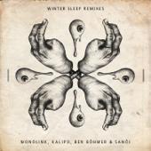 Winter Sleep (Ben Böhmer Remix)