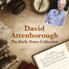 David Attenborough - David Attenborough: The Early Years Collection: The BBC Collection  artwork