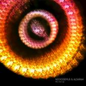 The Crow (Saagan Remix) - Nickodemus & Alsarah