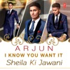 I Know You Want It Sheila Ki Jawani Single