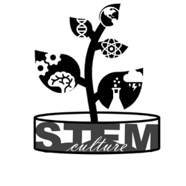 Stemculture Podcast 7 Balance Hobbies Fun And Mental Health On