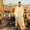 In My Bones - Single