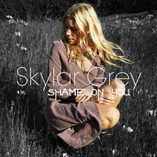 Skylar Grey - Shame on You m4a Song Download